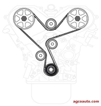 Typical timing belt with sprockets and idler pulleys