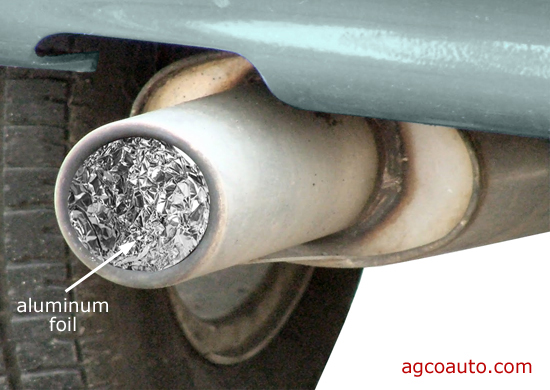 Plugging the tail pipe with aluminum foil may help keep insects and rodents out