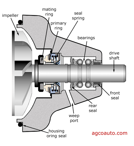 typical water pump components in a cross section view