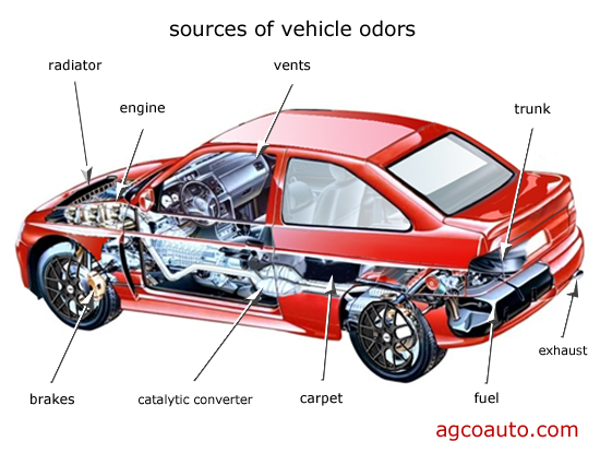 Nine common sources of automotive odors