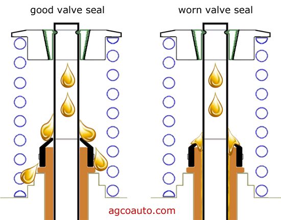 oil_consumption_valve_guide_seals.jpg
