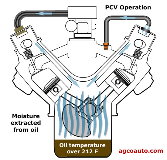 Pcv System Extracting Moisture on 2003 S10 Evap System Diagram