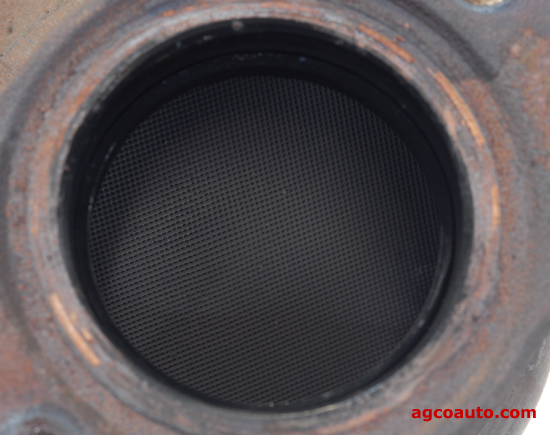 Still servicable catalytic converter, internal view